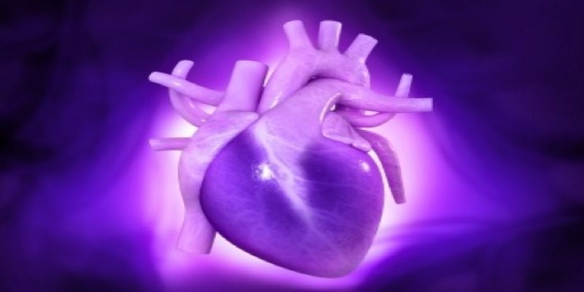 Medical Device News: FDA-grants-breakthrough-device-status-for-Cardiovalve-transcatheter-tricuspid-valve-replacement-system
